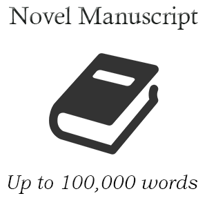 Novel100k